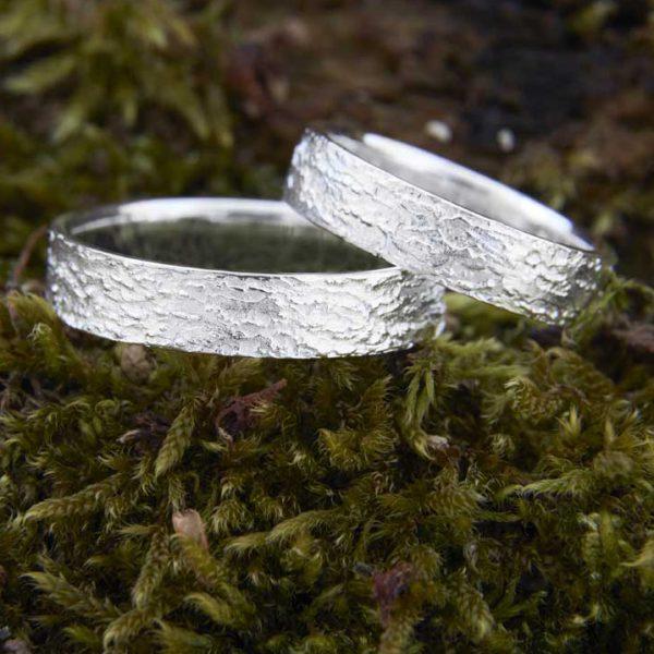 Rinden-Ringe